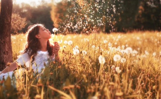Girl in field blowing dandelions